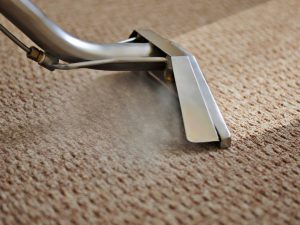 affordable carpet steam cleaning sydney